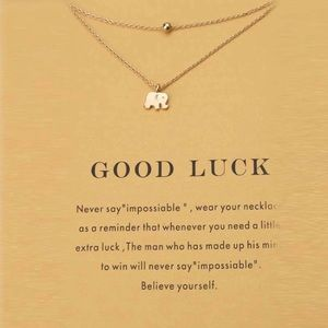 Jewelry - Good Luck Double Necklace